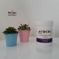 bis acrylamide 25gr Atocel
