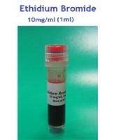 Ethidium Bromide 1ml سیناژن