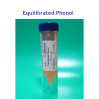 Equilibrated Phenol 20ml سیناژن